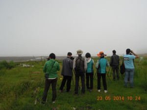 Visit to the Geum estuary as part of the National Shorebird Network meeting in Seocheon, Repulic of Korea.